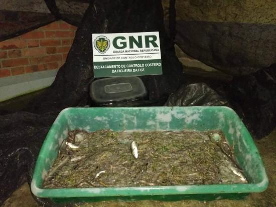 GNR UCC - Apreensão