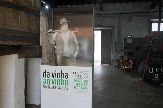 exposicao museu do vinho