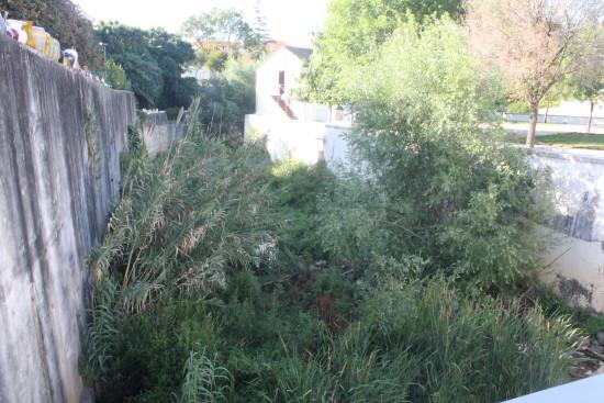 rio baça (1)